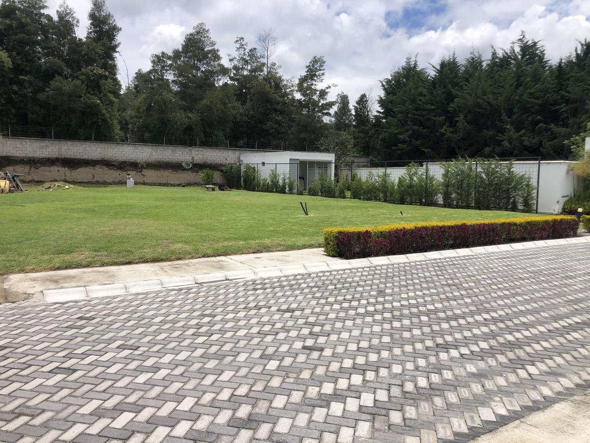 Foto Terreno en Venta en  Tumbaco,  Quito  Tumbaco, a tres cuadras de la Ruta Viva
