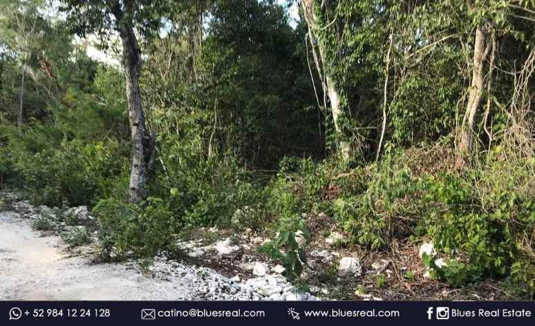 Picture Land in Sale in  Solidaridad ,  Quintana Roo  Land For Sale in Francisco Uh May Quintana Roo | Blues Real | Code 951