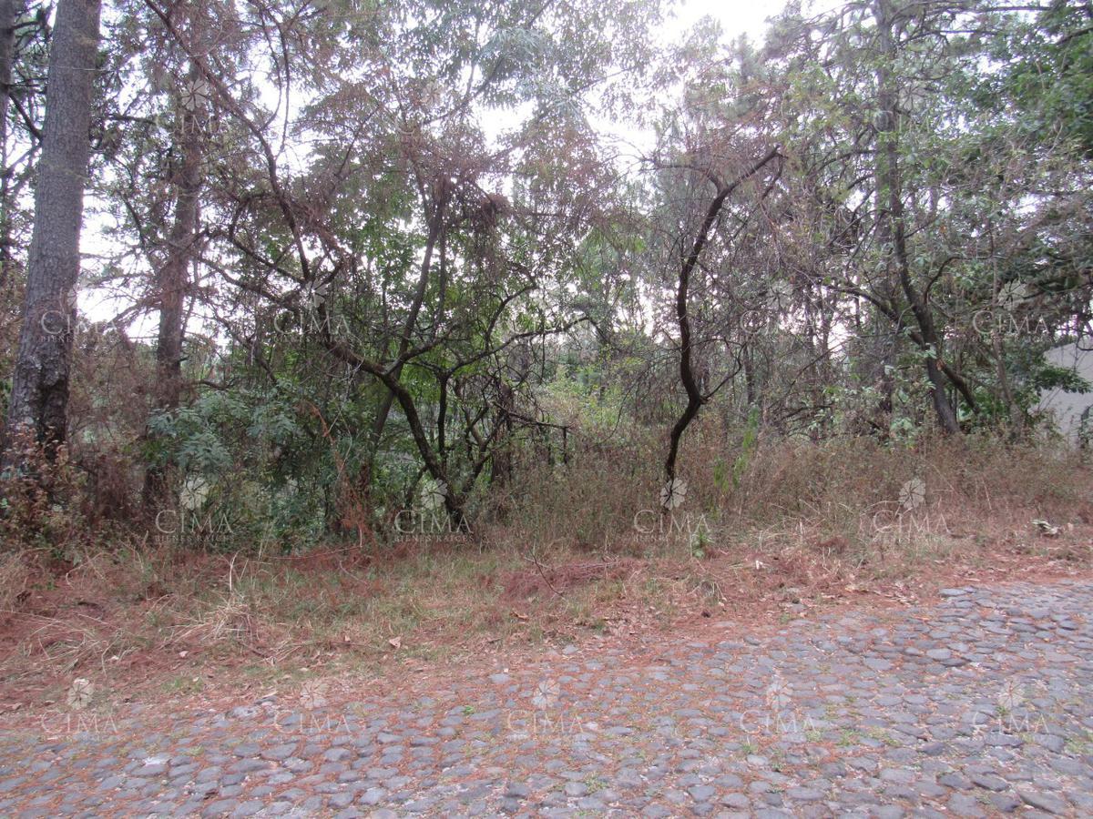 Foto Terreno en Venta en  Del Bosque,  Cuernavaca  VENTA TERRENO COL. DEL BOSQUE - T40