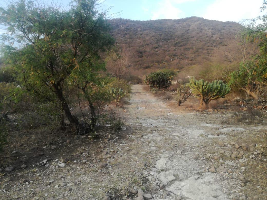 Foto Terreno en Venta en  San Juan del Río ,  Querétaro  TERRENO EN VENTA CERRO GORDO SAN JUAN DEL RIO, QRO