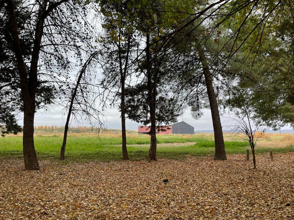 Foto Terreno en Alquiler en  Añelo ,  Neuquen  Ruta 17, Añelo Vaca Muerta