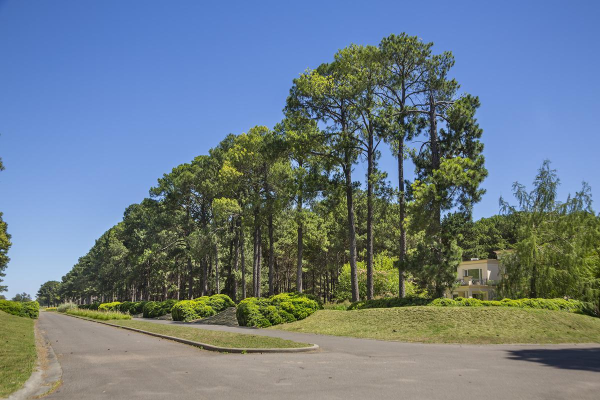 Foto Terreno en Venta en  Los Pinares C. Club,  Countries/B.Cerrado (Exaltación)  Pinares Country Club 461