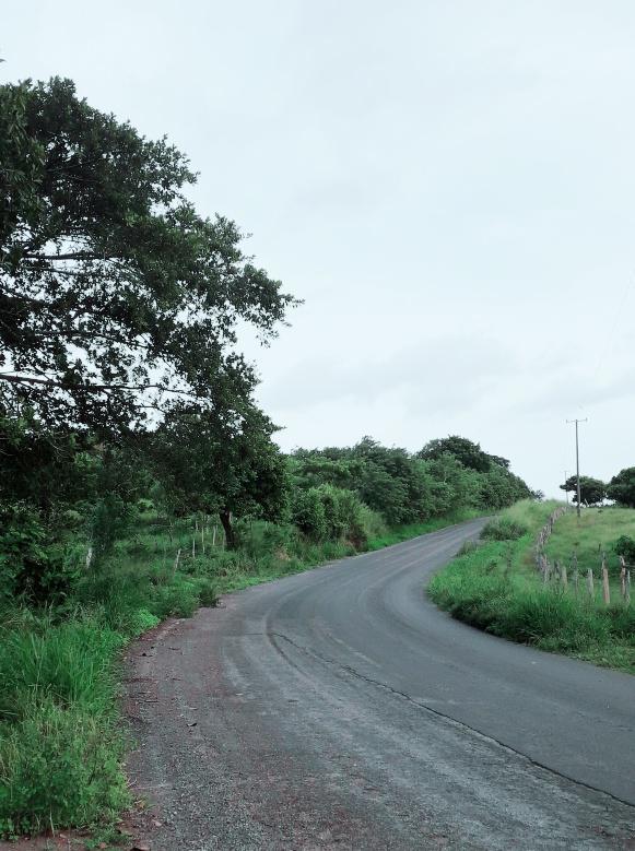 Foto Terreno en Venta en  Rancho o rancheria Nanchal,  Alvarado  TERRENO EN VENTA EN EL NANCHAL, VERACRUZ