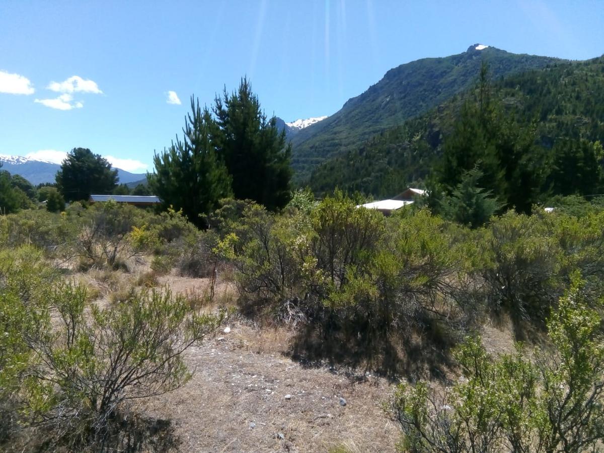 Foto Chacra en Venta en  Villa del Lago,  Epuyen  Epuyen