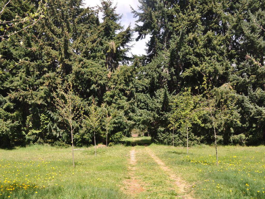 Foto Terreno en Venta en  Villaverde,  San Carlos De Bariloche  Bo.  Villaverde -   Jardines al lago UF 33