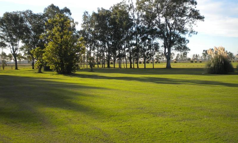 Foto Campo en Venta en  San Vicente ,  G.B.A. Zona Sur  57 Héctareas en San Vicente