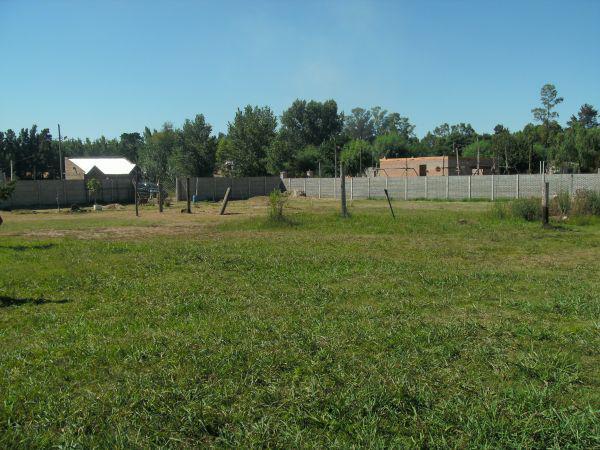 Foto Terreno en Venta en  Ezeiza ,  G.B.A. Zona Sur  SAENZ VALIENTE 1036