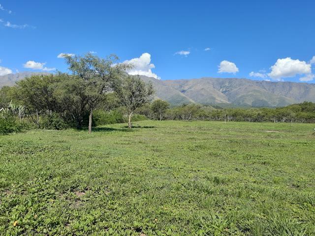 Foto Terreno en Venta en  Yacanto,  San Javier  Yacanto