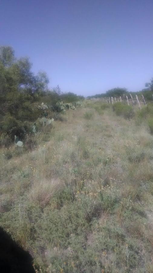 Foto Terreno en Venta en  Rancho o rancheria Santo Domingo,  Nava  Col. Agrícola y Ganadera, Rincón de Santo Domingo