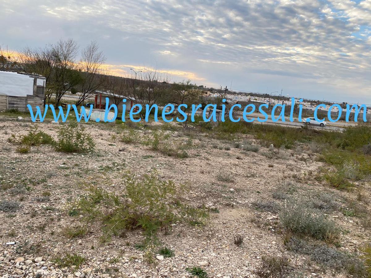 Foto Terreno en Venta en  Piedras Negras ,  Coahuila  COLONIA MONTES