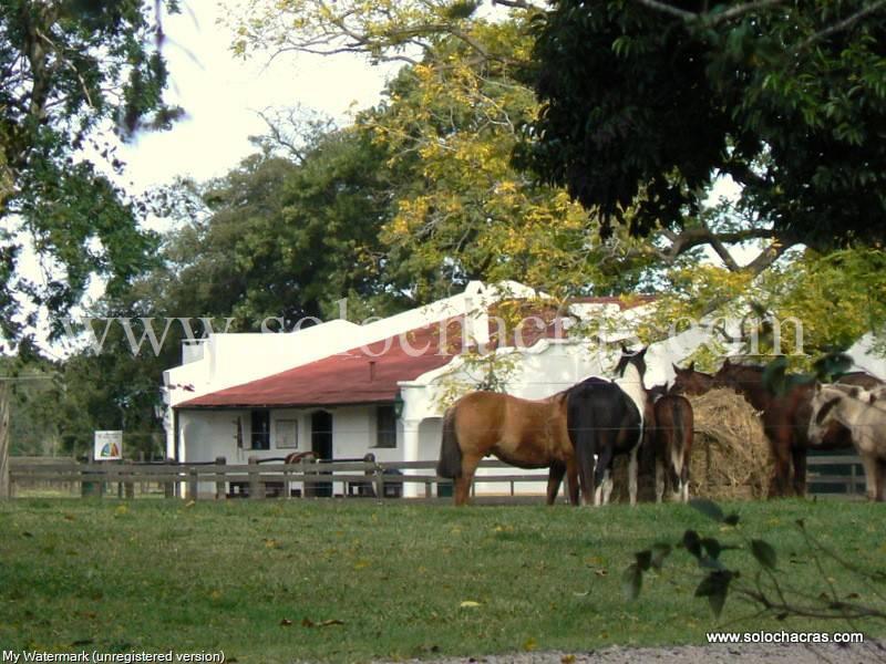 Foto Terreno en Venta en  Estancia Benquerencia,  San Miguel Del Monte  Estancia Benquerencia 263 265 San Miguel del Monte Buenos Aires