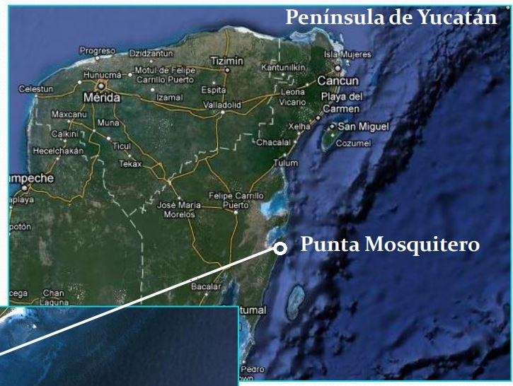 Foto Terreno en Venta en  Felipe Carrillo Puerto ,  Quintana Roo  Carretera Río Indio-Punta Herrero, Biosfera de Sian Ka'an, Quintana Roo.
