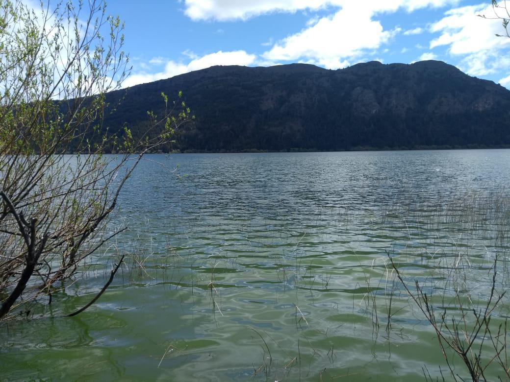 Foto Terreno en Venta |  en  Cholila,  Cushamen  Lago Pellegrini