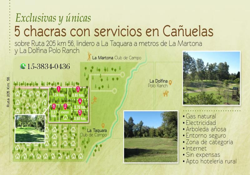 Foto Campo en Venta en  Cañuelas ,  G.B.A. Zona Sur  RUTA al 200