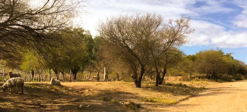 Foto Chacra en Venta en  San Fco Del Monte De Oro,  Ayacucho                  San Fco del Monte de Oro Lote  53.649 m2