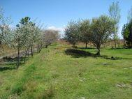 Foto Campo en Venta en  Cerrillo Piedras Blancas,  Toluca  TERRENO EN VENTA EL CERRILLO PIEDRAS BLANCAS, TLACHALOYA, TOLUCA