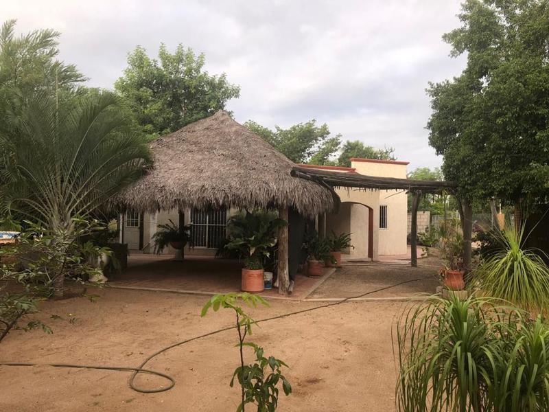 Foto Casa en Venta en  San Pedro México,  La Paz  CASA DE CAMPO EN SAN PEDRO