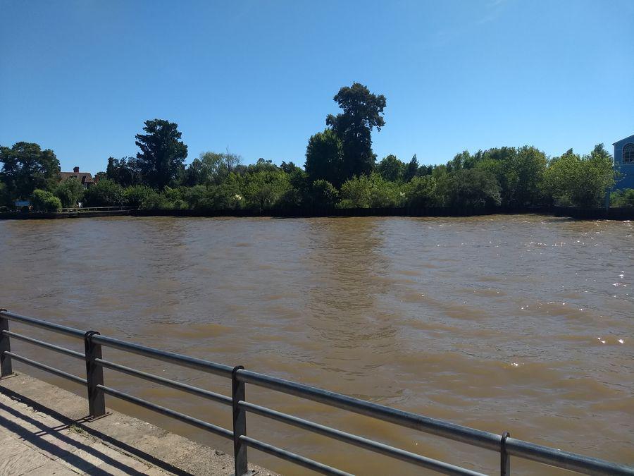 Foto Terreno en Venta en  Lujan,  Zona Delta Tigre  Rio Lujan Fr 556