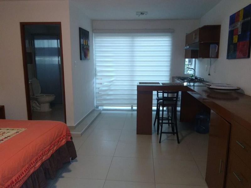 Foto Departamento en Renta en  La Tampiquera,  Boca del Río  Departamento en renta tipo loft amueblado, Fracc. Tampiquera