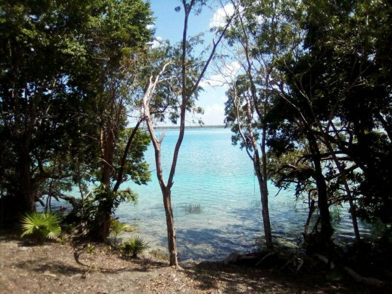 Foto Terreno en Venta en  Bacalar ,  Quintana Roo  Terreno  frente a Laguna de Bacalar