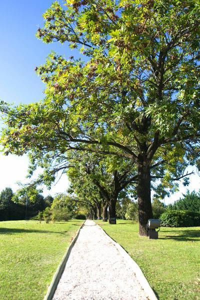 Foto Terreno en Venta en  Ayres de Pilar,  Countries/B.Cerrado (Pilar)  colectora Ramal Pilar 15