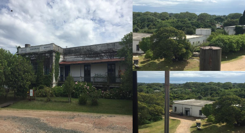 Foto Terreno en Venta | Alquiler en  Pando ,  Canelones  Pando