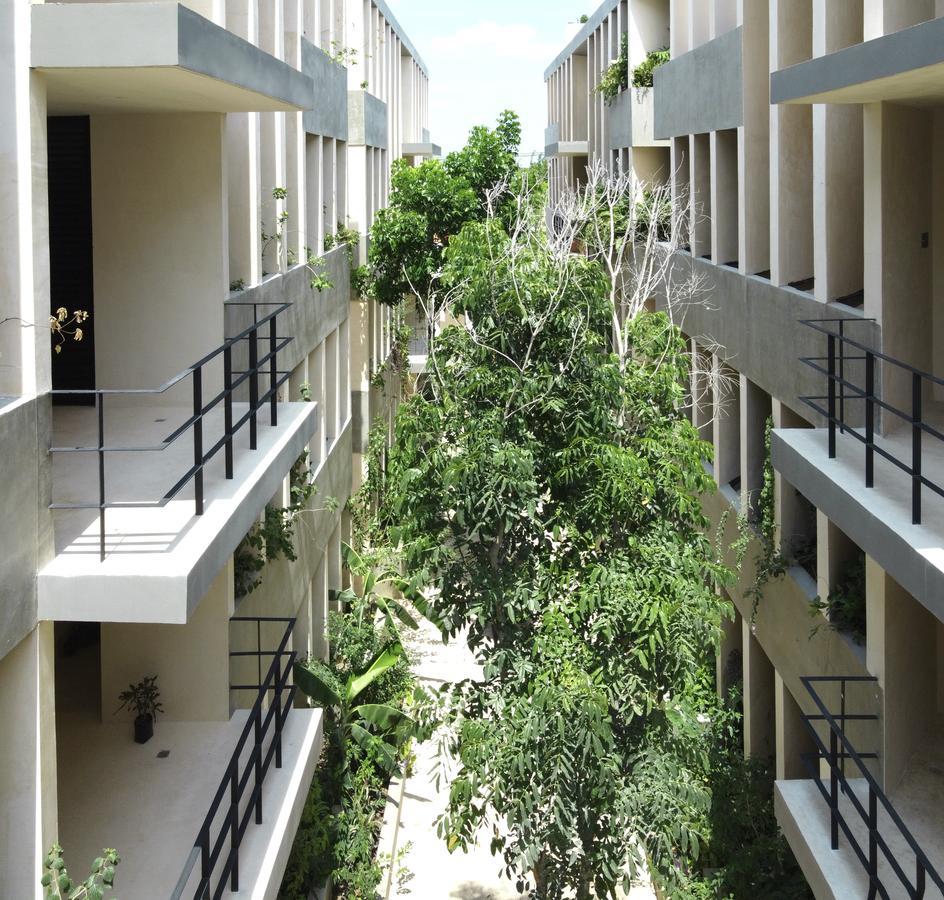 Foto Departamento en Renta en  Santa Gertrudis Copo,  Mérida  DEPARTAMENTO NUEVO AMUEBLADO- Santa Gertrudis Copo