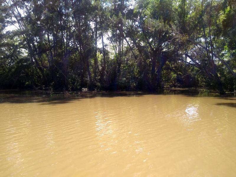 Foto Quinta en Venta en  Carapachay,  Zona Delta Tigre  Carapachay KM. 10  Parcela 3