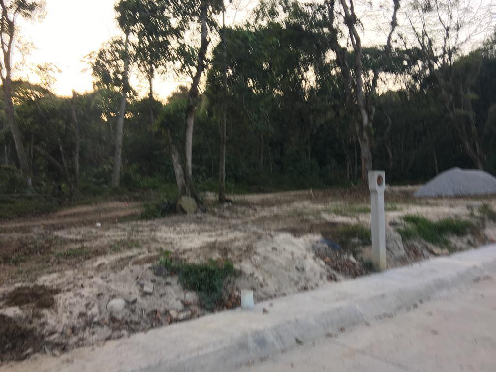 Foto Terreno en Venta |  en  Fraccionamiento San José,  Coatepec  TERRENO EN VENTA EN COATEPEC VER, L6 M4, al 100