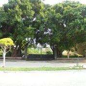 Foto Terreno en Renta en  Miami,  Carmen  Terreno Av. Castellot