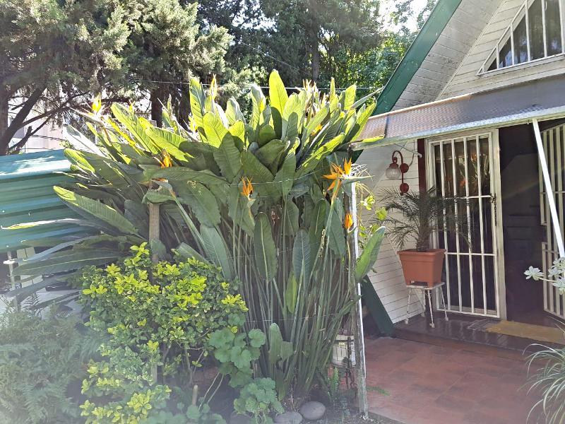 Foto Casa en Venta en  Barrio Parque Leloir,  Ituzaingo  Pialada al 3300