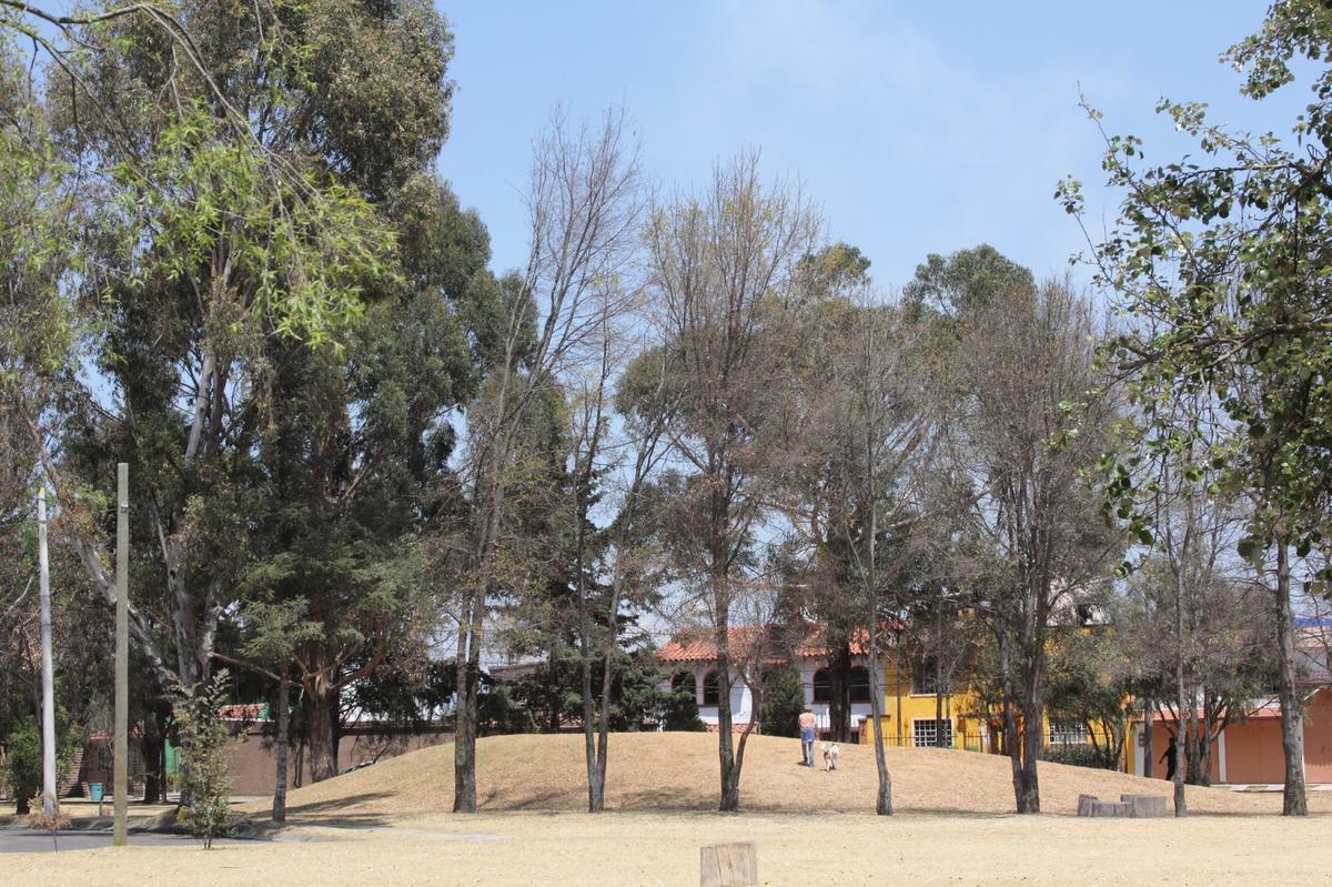 Foto Casa en Venta en  Metepec ,  Edo. de México  La Virgen
