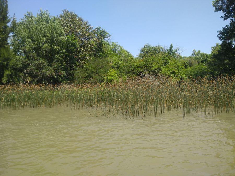 Foto Quinta en Venta en  Caraguata,  Zona Delta Tigre  Caraguatá 900