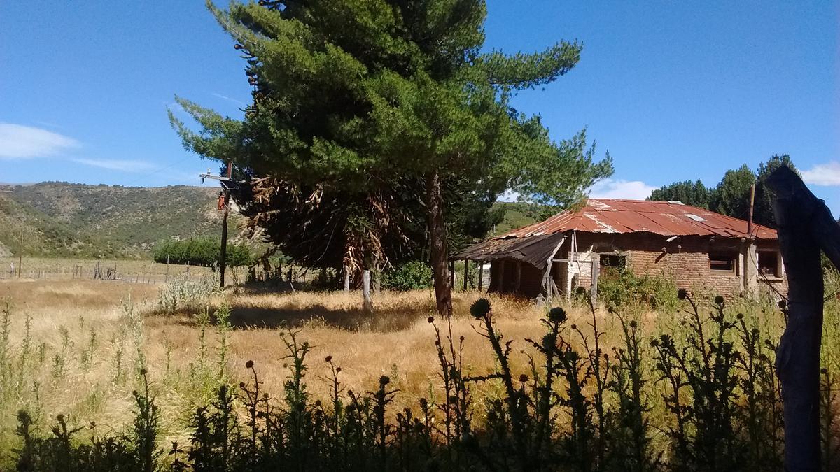 Foto Campo en Venta en  Cholila,  Cushamen  10has. El Cajón, Cholila