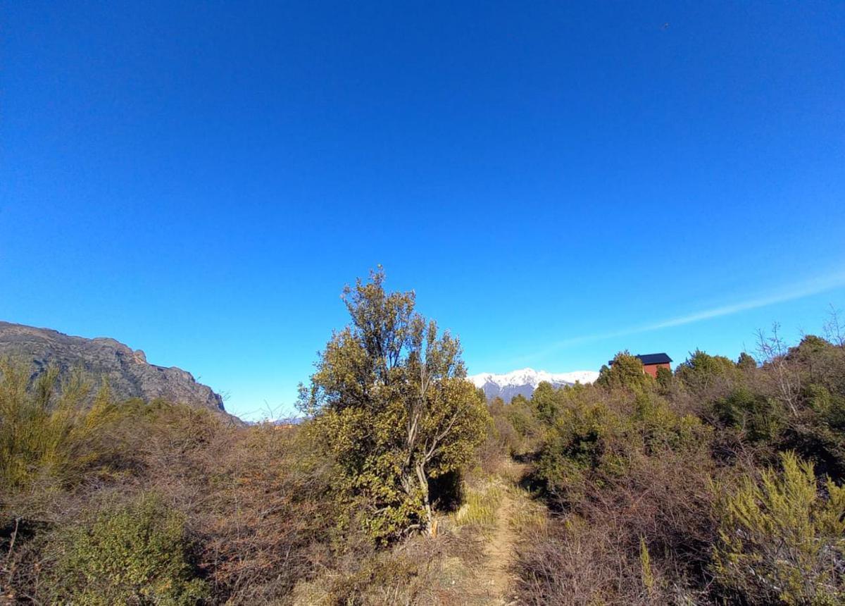 hermoso Terreno 625m2 - 10a 214 - Lomas del Cauquen- Bariloche