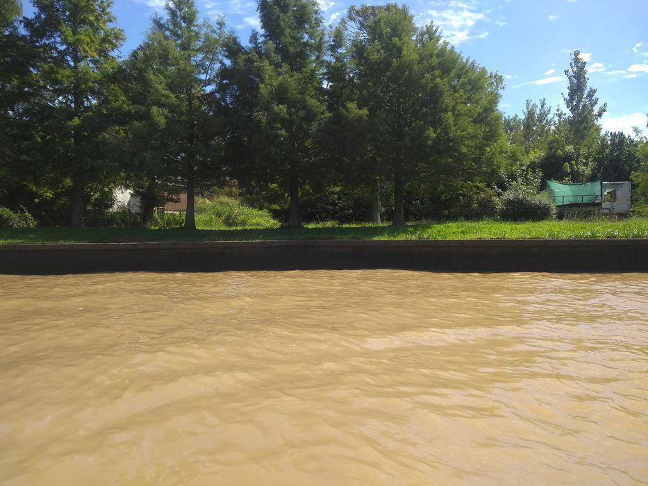 Foto Terreno en Venta en  Lujan,  Zona Delta Tigre  Rio Lujan Regueiro