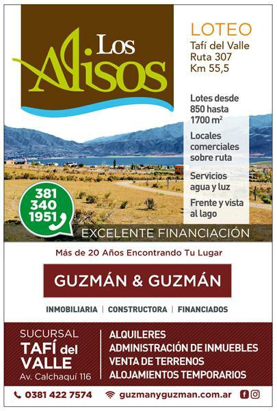 Foto Terreno en Venta en  Tafi Del Valle ,  Tucumán  TERRENO EN VENTA  933 M2 (LOTE 13).  Ruta 307 TAFI DEL VALLE FRENTE AL LAGO