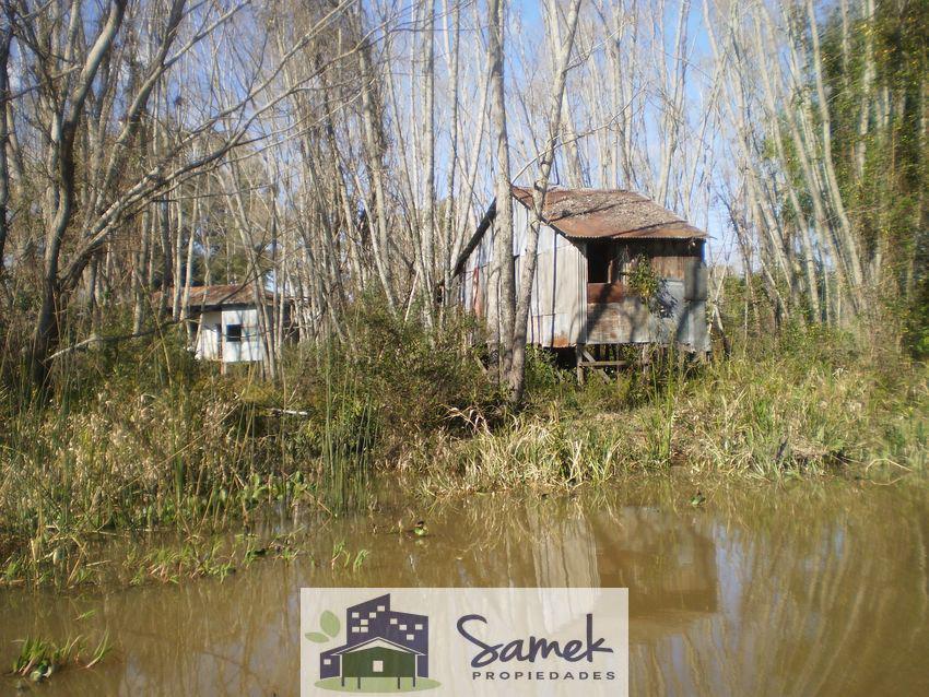 Foto Quinta en Venta en  Laguna del Barca Grande,  Zona Delta San Fernando  Laguna del Barca Grande y Arr El Negro