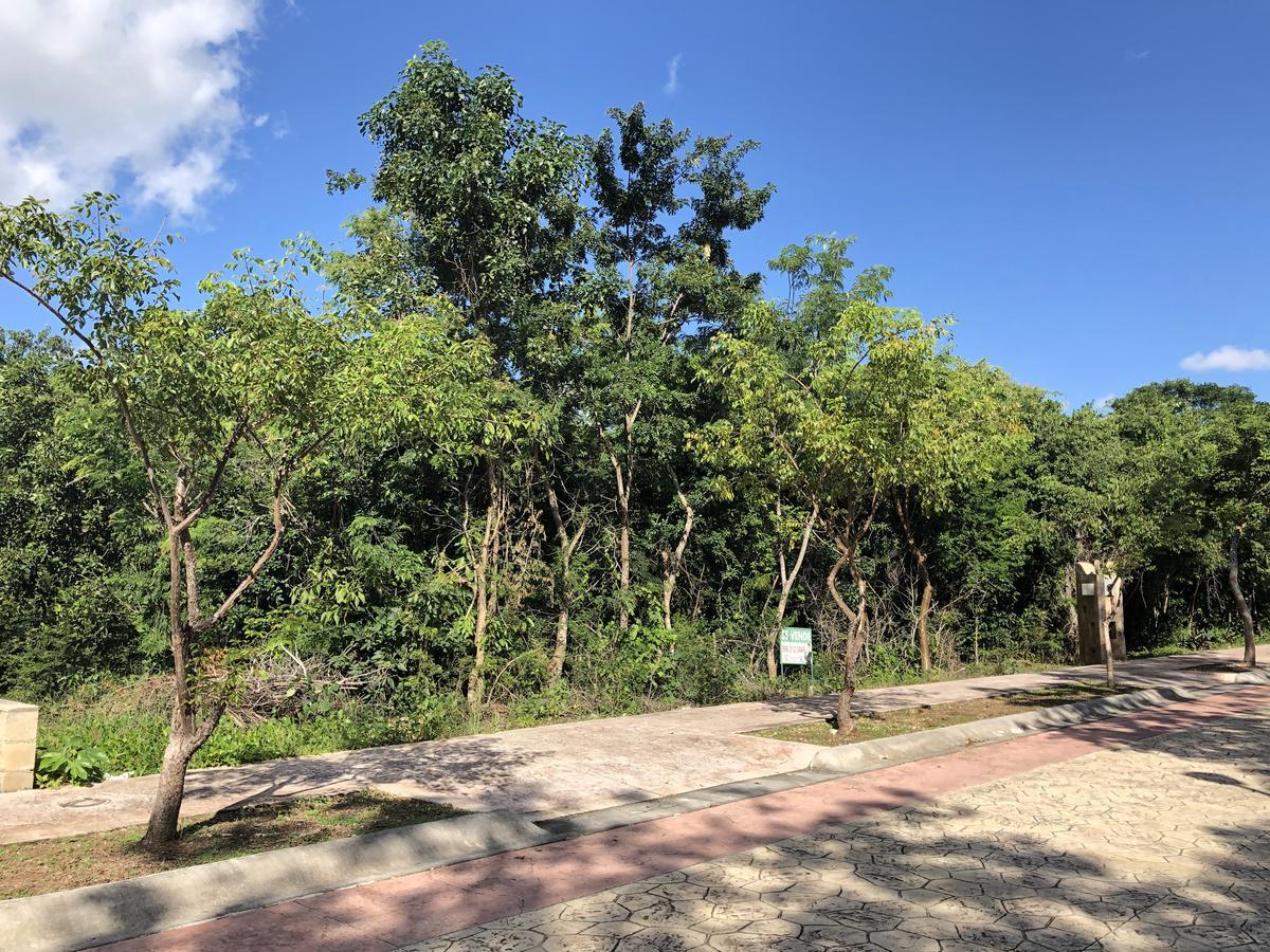 Foto Terreno en Venta en  Lagos del Sol,  Cancún          Residencial lagos del  Sol