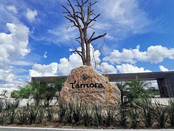 Foto Terreno en Venta en  Conkal ,  Yucatán  TAMORA Residencial- Terreno en venta en esquina.