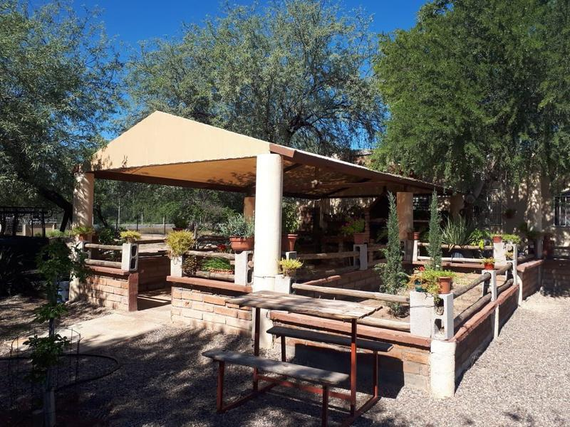 Foto Casa en Renta en  Congregacion San Pedro El Saucito,  Hermosillo  Casa de Renta en San Pedro al Noreste de Hermosillo, Sonora