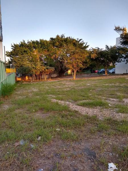 Foto Terreno en Renta en  Fraccionamiento La Florida,  Tampico  Fraccionamiento La Florida