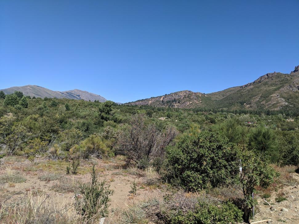 Foto Terreno en Venta en  Bariloche ,  Rio Negro  Lomas del cauquen lote 6
