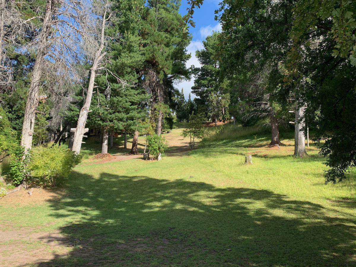 Foto Campo en Venta en  Futaleufu,  Futaleufu  Faldeo sobre Ruta 71 camino al Parque Nacional