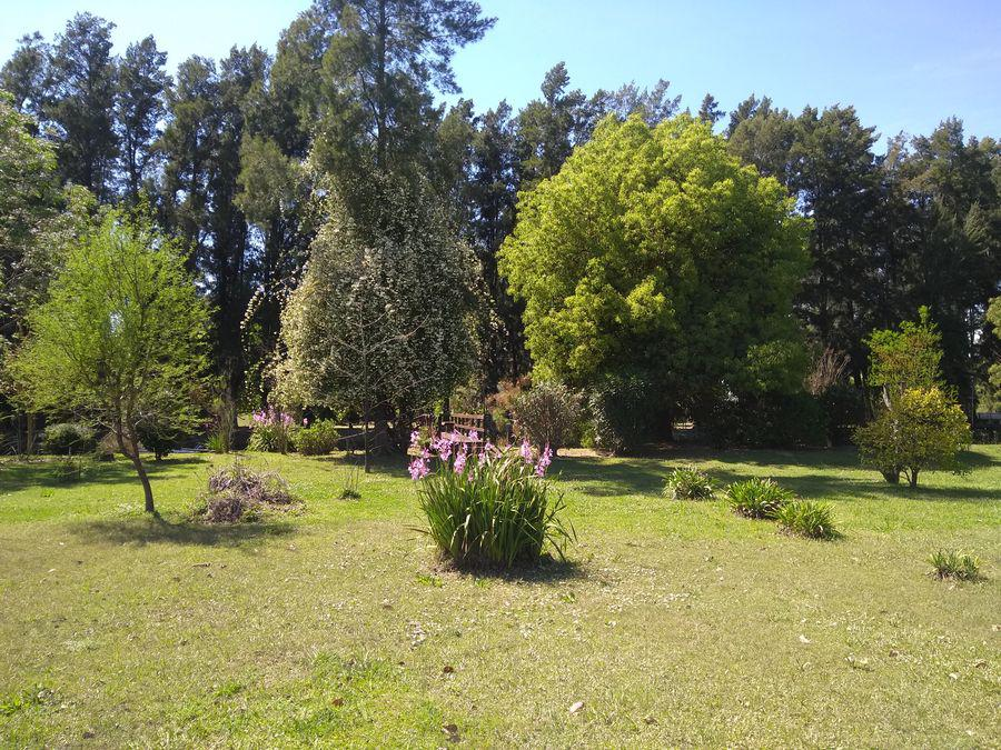 Foto Casa en Venta en  Gelvez,  Zona Delta Tigre      Gelvez 481