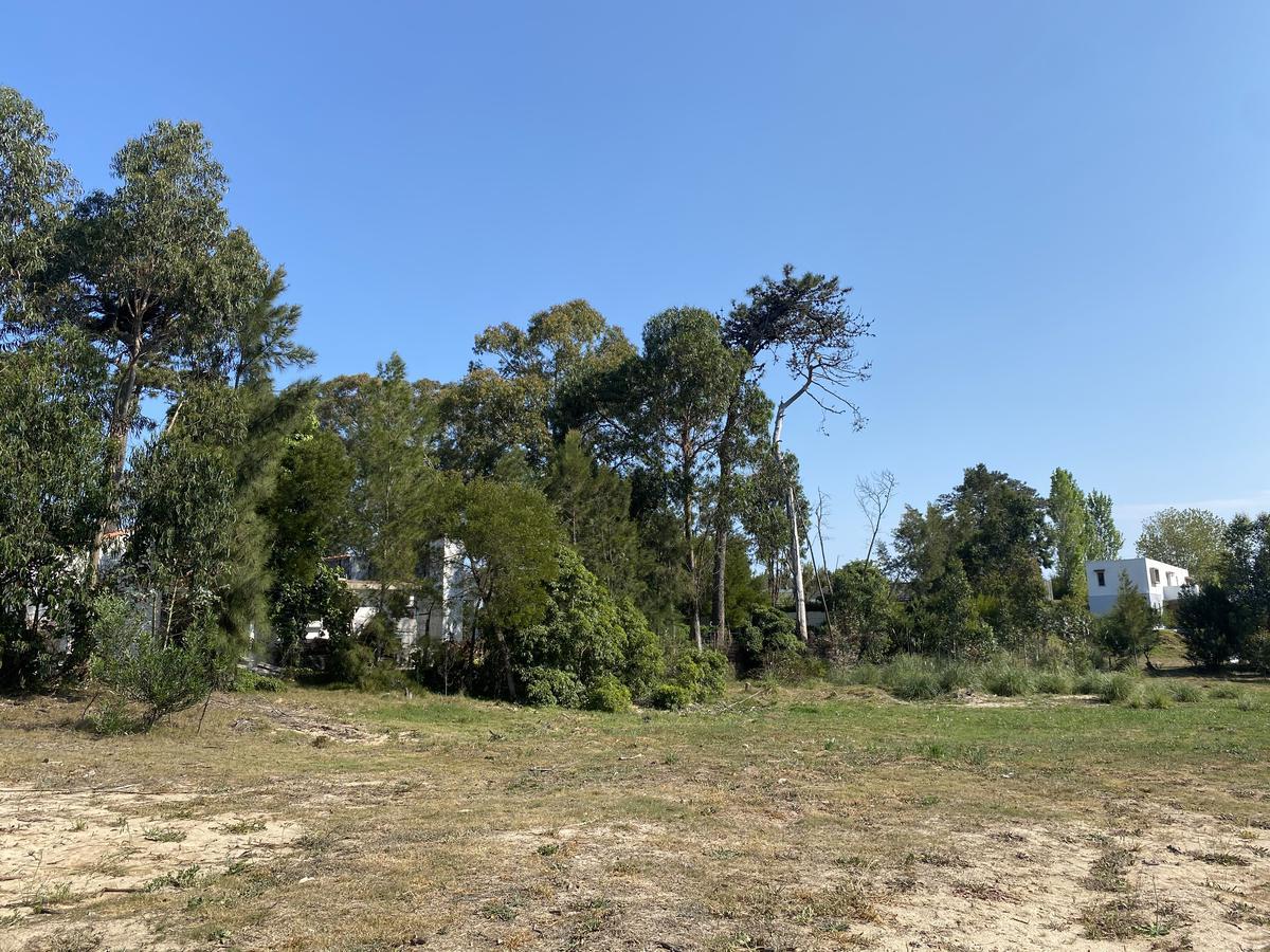 Foto Terreno en Venta en  Punta del Este ,  Maldonado  Barrio privado La Residence