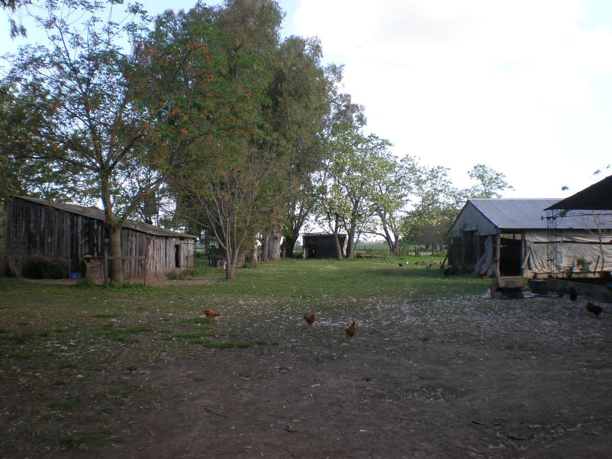 Foto Campo en Venta en  Olivera,  Lujan  A 2 Cuadras de RUTA 5