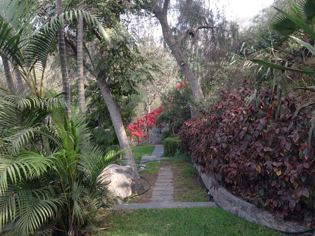 Foto Casa en Alquiler en  La Molina,  Lima  La Molina