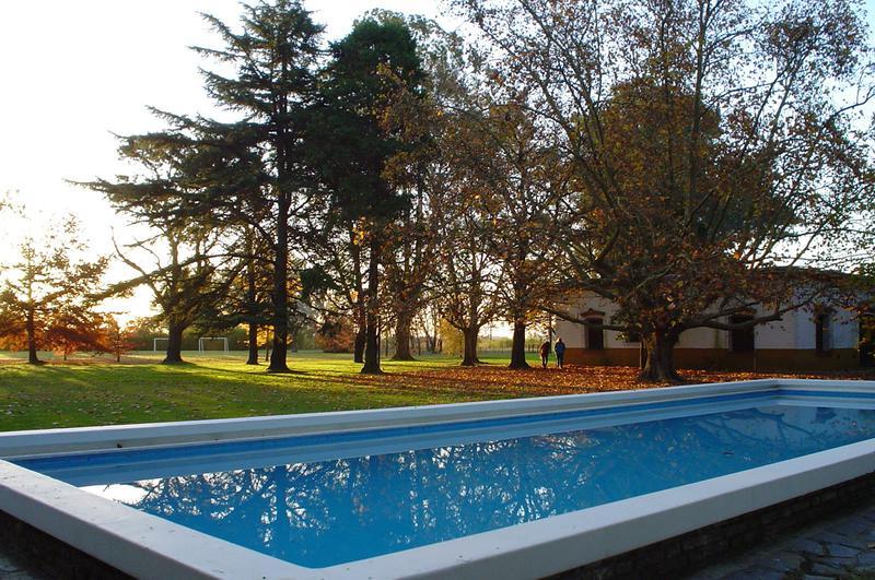 Foto Terreno en Venta en  Campos Daromy,  Countries/B.Cerrado (San Vicente)  Venta - Lote en Campo Daromy