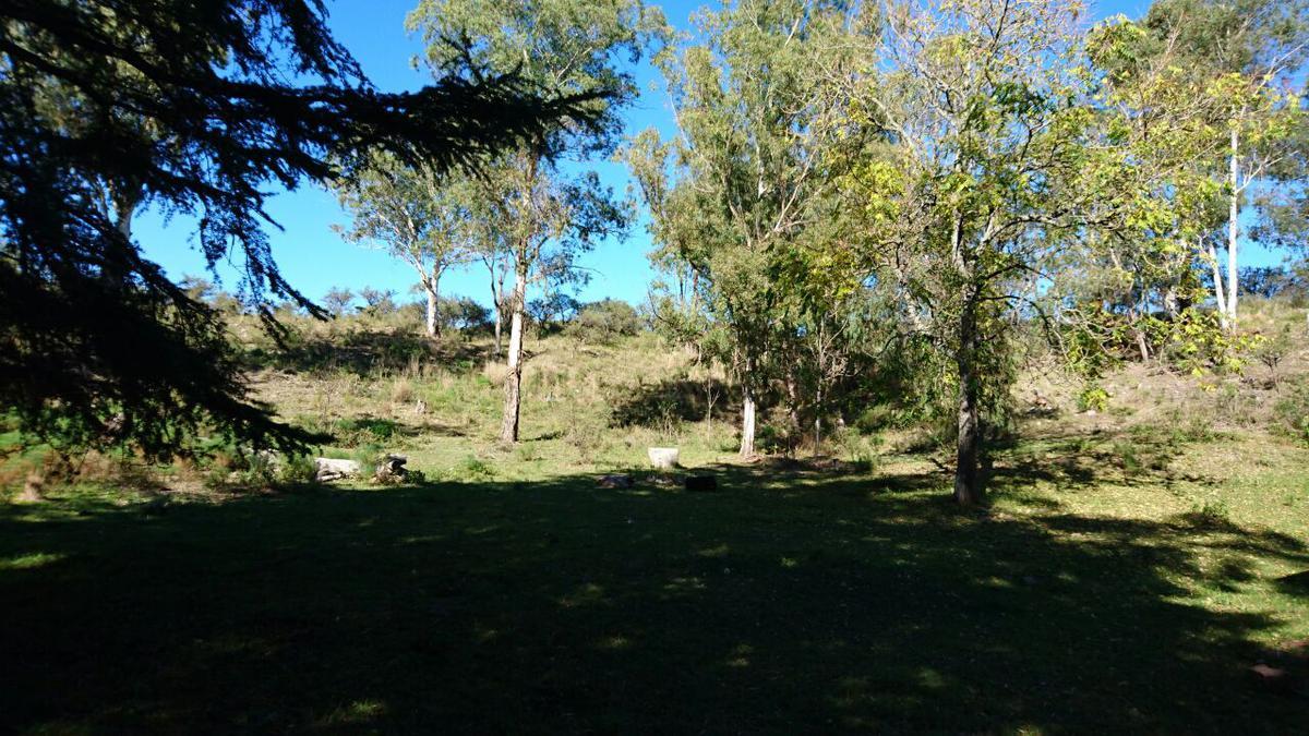 Foto Terreno en Venta en  Villa Del Dique,  Calamuchita  La Sierrita Villa del Dique, Lote 4